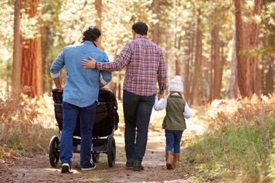 LGBT Adoption in Minnesot…